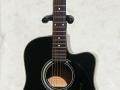 Maton Tommy Emanuel model TE89 zwart. Door Hank Marvin gebruikt op zijn Tours in 1994-1995 en The Shadowstour 1990.