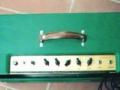 Mojo amp 35 watt buizen van Roberto Pistolesi, top.