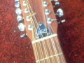 Roderich Paesold P150 12 string, headstock front.