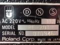 Roland Space Echo RE-201 typeplaatje Westers.