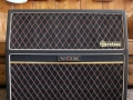 Vox Gyrotone MK2 Rotary cabinet 1967, 2 snelheden, front.