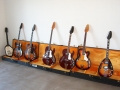 Vox Guitar Collection.