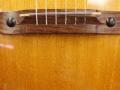 V220 Serenader 1966-1969, fabrikaat Crucianelli Italy, brug.