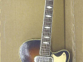 Vox 3 pickups 1963, fabrikaat Welson Italy, front.