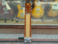 Hawaiin Steel Guitar 1964,  mahogany body , 6 snaren, 1 Vox pickup , controls, voor etalage.