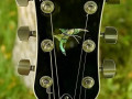Virage 2 Butterfly Series 2011 Japan, headstock front met Butterfly Paua shell inlays.