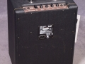 2001-2005 T25 Solid State Bass amp 25 watt. 10 inch speaker en horn. Made in Korea.back.