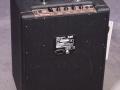 2001-2005 T25 Solid State Bass amp 25 watt. 10 inch speaker en horn. Made in Korea.back.