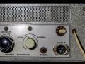 Framez-Echomatic-2-Wheel-echo-frontplaat-rechts-met-controlelampjes-Effects-groen-en-Echo-Mains-rood.