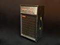 WEM Deep Blue Combo 1966, 30 watt 4xEL84 en Celestion G12-H Greenback, met aan achterzijde ingebouwde Powercat Echo, front.