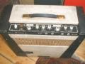 WEM Warrior bass 1963, back.