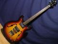 Wilson SAB2 Semi acoustic 4 string bass met 2 Schaller pickups.